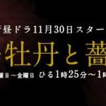 『新・牡丹と薔薇』のキャストやあらすじ【フジテレビ系昼ドラ「牡丹と薔薇」が復活!】