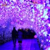 クリスマスに行きたい! 全国幻想的な人気イルミネーションランキング2020