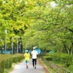 始める理由1位!ランニング・ジョギングが与える健康・ダイエットへの影響正しいのか?